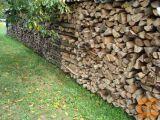 Drva suha
