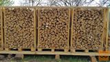 Brezova drva na paletah
