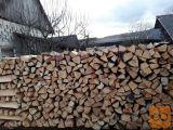 drva suha bukova